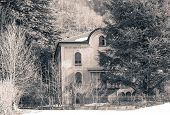 pic of house woods  - isolated house in the woods seems abandoned like in a horror movie - JPG
