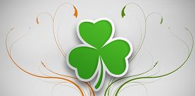 picture of st patty  - Shamrock design on grey background for st patricks day - JPG