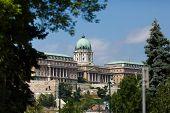 image of royal palace  - Royal Palace in Budapest at summer day - JPG
