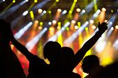 picture of crowd  - Crowd at concert  - JPG