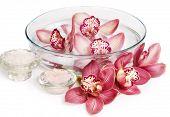 Spa foodstuff. Orquídeas em água e banho de sal