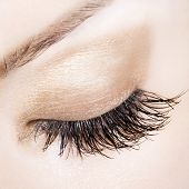 Woman eye with extremely long eyelashes. Delicate pastel shades. Focus mostly on eyelashes