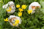 Easter- Or Spring Decoration - Funny Little Sheep
