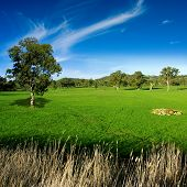 Paisaje rural en las colinas de Adelaida