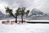 stock photo of salvatore  - park - JPG