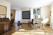 Interior house, nice livingroom classical furniture poster