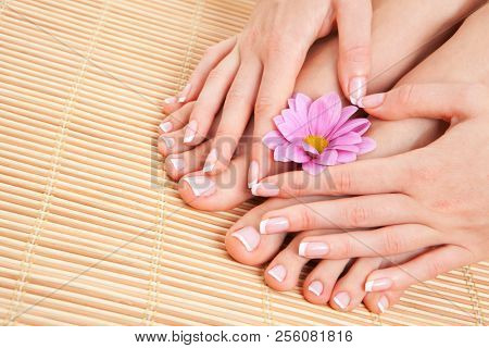 poster of Care for beautiful woman skin and nails. Pedicure and manicure at beauty salon. Woman legs, hands wi