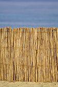 reed hut on beach, red sea, sinai, egypt