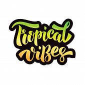Tropical Vibes - Handdrawn Lettering. Template For Logotype, Badge, Icon, Card, Postcard, Logo, Bann poster