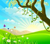 picture of fairyland  - SUNRISE IN A FAIRYLAND - JPG