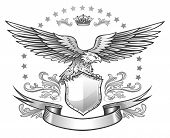 image of spread wings  - Spread winged eagle insignia - JPG