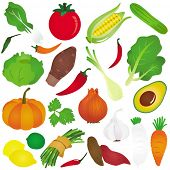 Colorful and Cute vector Icons : Design Elements : Fruits, vegetable, food isolated on white