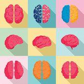 Genius Brain Icon Set. Flat Set Of Genius Brain Vector Icons For Web Design poster