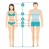 Vector Illustration Of Man And Women In Full Length With Measurement Lines Of Body Parameters . Man  poster