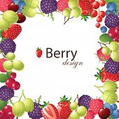 berries frame for your designs - vector