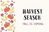 Harvest Season - Hand Drawn Lettering Phrase With Autumn Harvest Symbols. Harvest Fest Poster Design poster