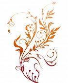 Floral vector decoration.Nature plant design.