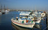 The Harbor Of Pafos Cyprus