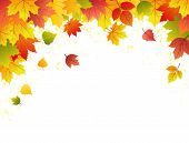 foto of fall leaves  - Autumn leave sbackground - JPG