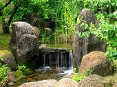 Japanese Water Garden