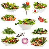 Collection of salads, isolated on white.  Includes green salad, garden salad, greek salad, chicken salad, and ingredients.
