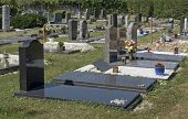 Sunny Illuminated Jewish Graveyard