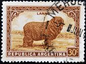 A stamp printed in Argentina shows merino wool