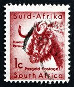 Postage Stamp South Africa 1926 Gnu, Antelope