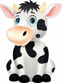 picture of moo-cow  - Vector illustration of Cute cow cartoon sitting - JPG