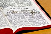 Rosary Bible Page - Daniel