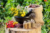 stock photo of black tea  - healing herbs in mortar and in sack herbal medicine - JPG