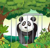 Постер, плакат: Иллюстрация леса с panda внутри клетка