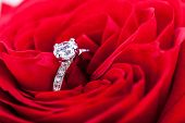 foto of sweetheart  - Overhead view of a diamond engagement ring nestling in the heart of a red rose amongst the soft petals