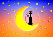 stock photo of epiphany  - illustration of cat on the moon for Happy Epiphany - JPG