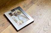 stock photo of envy  - Broken picture frame on the floor with picture of married couple - JPG