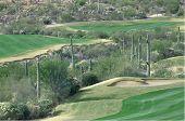 Arizona Golf Course