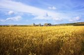 stock photo of potash  - a potash mine with golden wheat fields under a blue summer sky - JPG