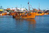 fisherman sailing in Mar del Plata