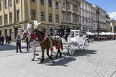 People Enjoy Horse-drawn Carriage At The Market Square