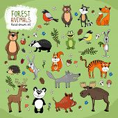 Forest Animals hand-drawn illustration