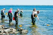 Group Examining Water With Ring Nets