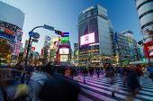 Tokyo - November 28, 2013: Pedestrians At The Famed Crossing Of Shibuya