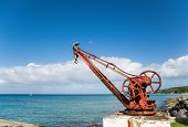 Old Rusty Crane With Pelican