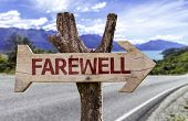 Farewell wooden sign with a street background