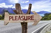 Pleasure wooden sign with a street background