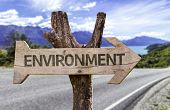 Environment wooden sign with a street background