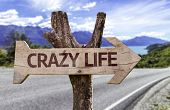 Crazy Life wooden sign with a street background