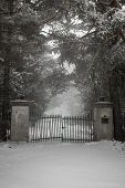 Spooky old broken gate on driveway in winter