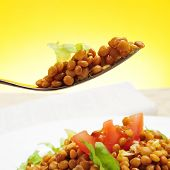 closeup of a plate with refreshing lentil salad