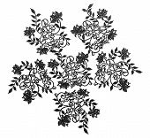 Embroidered Lace Trim Over White Background. Fabric Texture Set